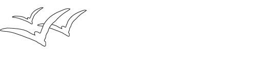 Diversity Counselling New Zealand